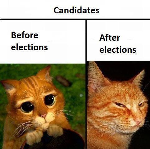 Kandidaten vor und nach Wahlen