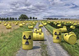 atommuell bundestag korruption inkompetenz
