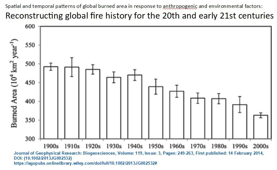 waldbrand langzeit statistik global